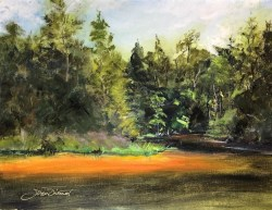 Oil painting showing the tannin-rich waters of Turley Creek, Niceville, FL