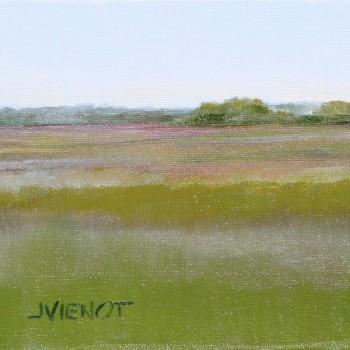 2014-0426 Sea Island Marsh 1