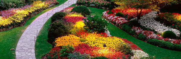 Jardineiros e paisagistas