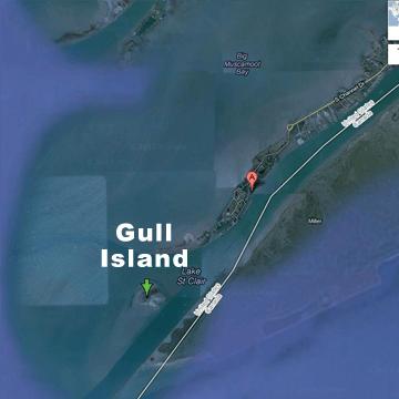 Gull Island Lake St Clair