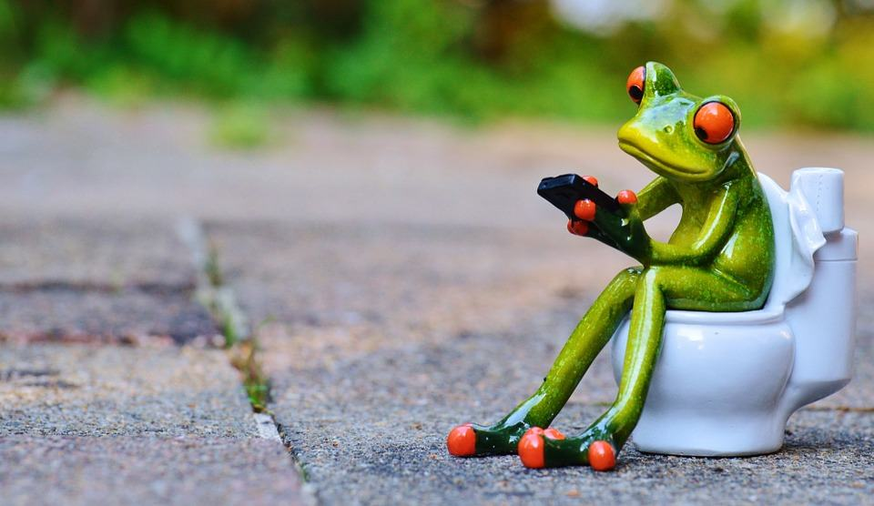 Frog on toilet, Don't flush prescription drugs