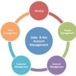 Key Account Manager Job Description Example