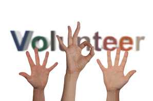 Volunteer manager job description, duties, tasks, and responsibilities