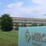 Merck Hiring Process: Job Application, Interview, and Employment