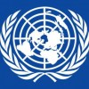 United Nation (UN)