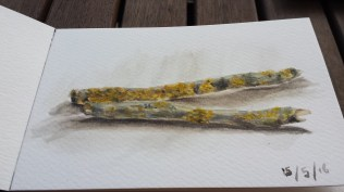 twigs painting