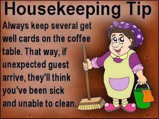 Hum Quote Extraordinary Work Quote Funny Housekeeping Tip Funny Quotes Quote Jokes Lol