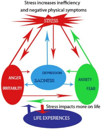 how to avoid anger and stress