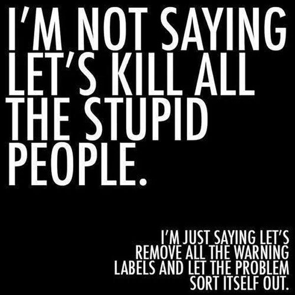 Silly People Quotes: Work Quote : Inspirational Quotes: Not Saying To Kill All