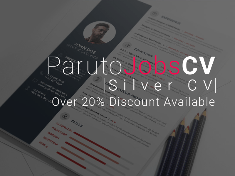 Silver CV (5 – 9 Years Experience)