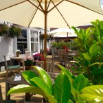 Fox & hounds bear garden/terrace