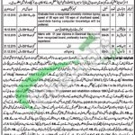 District & Session Court Gujrat Jobs