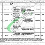Excise & Taxation Punjab Jobs