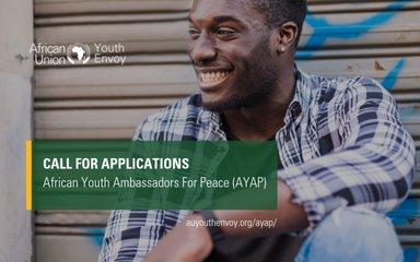 african youth ambassadors for peace program 2019 jobsandschools