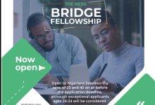 Photo of The Nigerian Economic Summit Group (NESG) Bridge Fellowship 2019