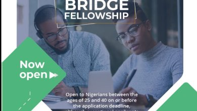 Photo of The Nigerian Economic Summit Group (NESG) Bridge Fellowship 2019