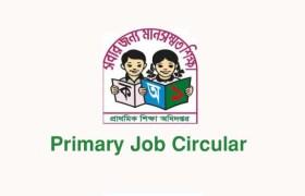 Primary Teacher Job Circular 2019