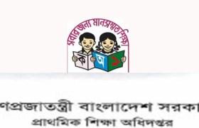 primary teacher result 2019
