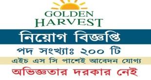 Golden Harvest InfoTech