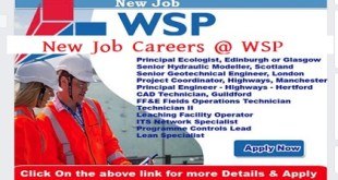 new job careers @ WSP