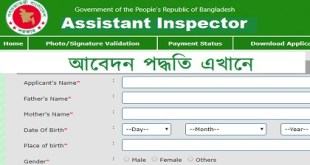 Assistant Inspector