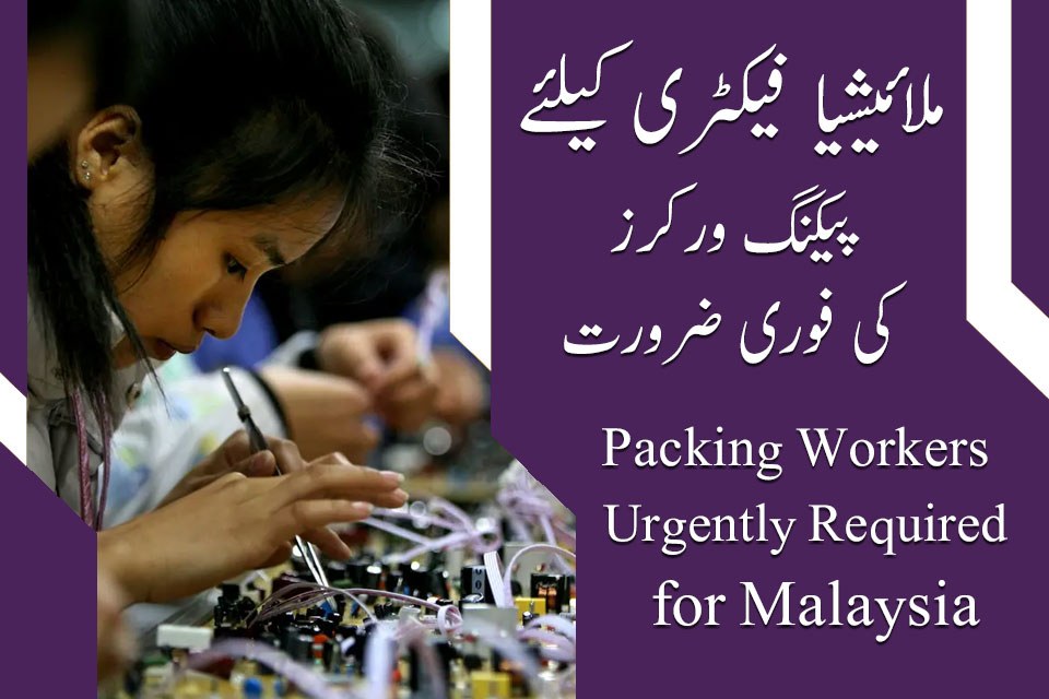 Malaysian Electronic Factory Packing Workers Jobs