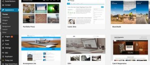 installing a new theme for your website