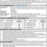Punjab Provincial Cooperative Bank Jobs 2016 January Latest Advertisement