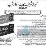 shahbaz-sharif-merit-scholarship-peef-2016-2017