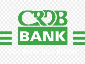 New Jobs at CRDB 2021   Information System Officer
