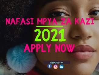 Jobs In Tanzania 2021, Nafasi za kazi Katika Kampuni Mbalimbali 2021, Jobs In Tanzania 2021, It include also Ngo jobs in tanzania, un jobs in tanzania.