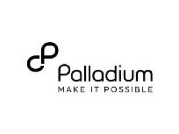 New Jobs at Palladium International Tanzania 2021   Senior Systems Architect