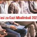 Nafasi za Kazi Mbalimbali 2021, nafasi za kazi Mashirika Binafsi 2021, nafasi za kazi madukani 2021, Best Jobs in Tanzania