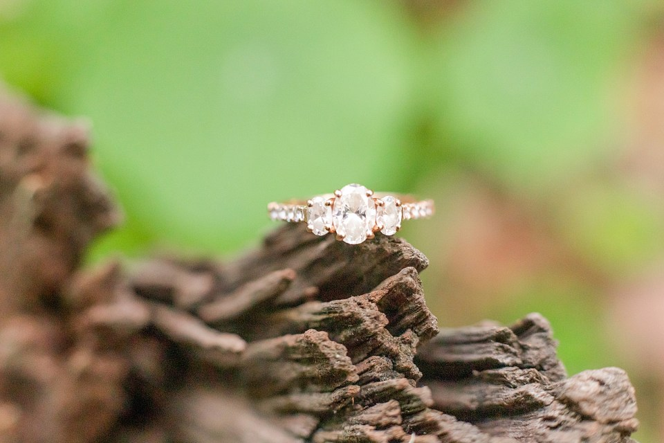 A close up of Maddy's engagement ring on a tree branch