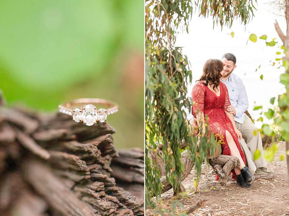 A close up of Maddy's engagement ring and the couple sitting together with tree branches covering part of them in the foreground