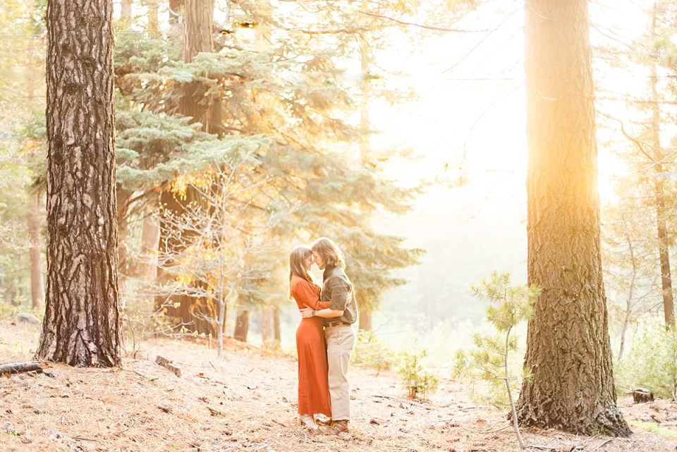 The bride and groom touching foreheads and hugging each other around the waist as the sun comes in from the right side of the photo behind a large pine tree during their Lake Arrowhead Engagement session.