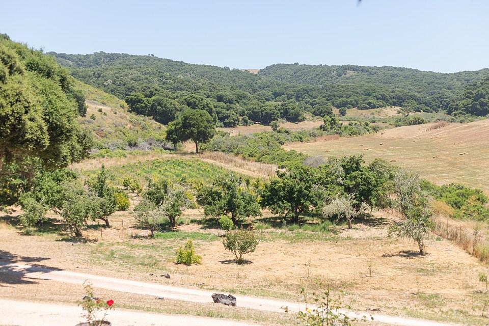 The grounds around Brandi & Victor's Rancho San Julian Wedding venue