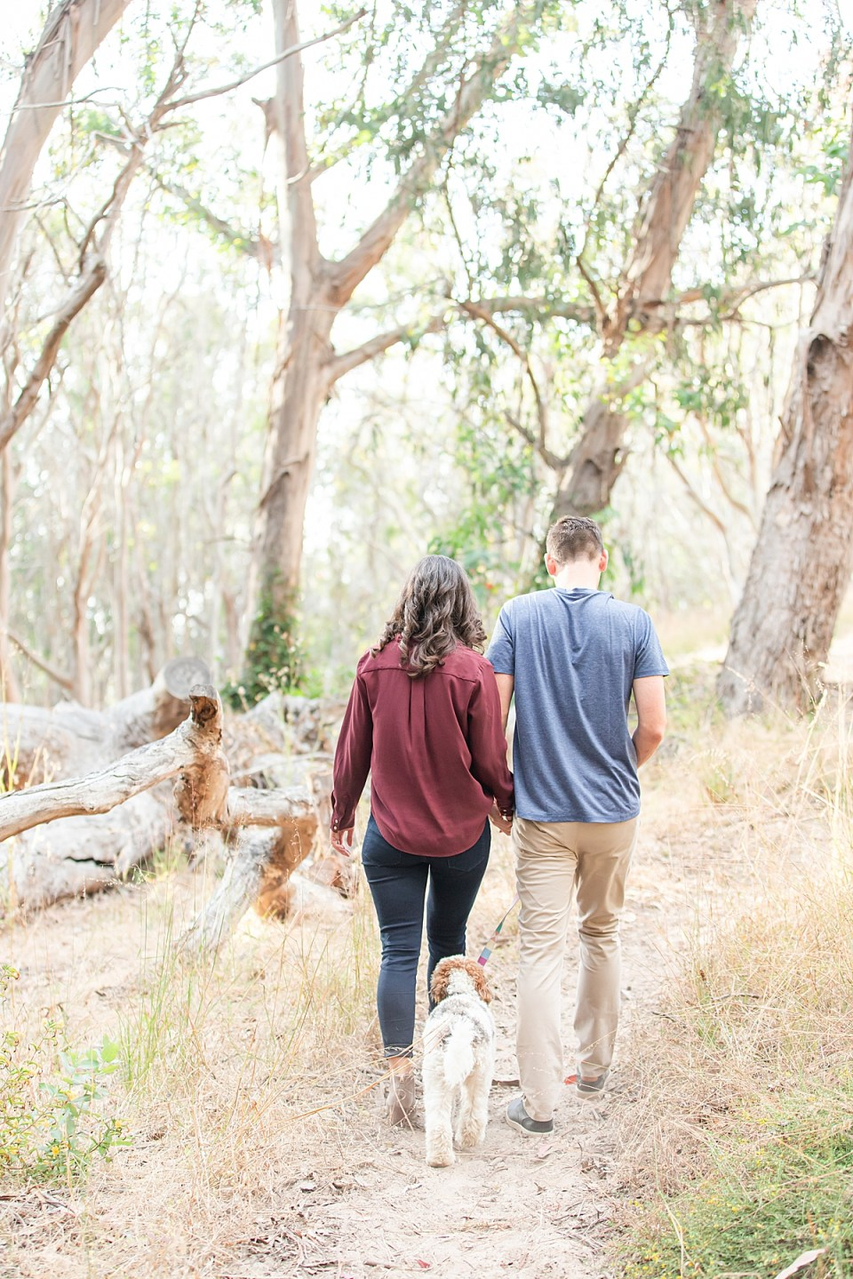 Lauren & Scott walking their puppy away from the camera during their Montaña de Oro engagement session.
