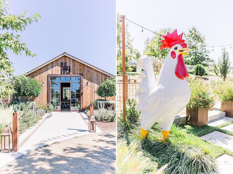 The front entrance to MarFarm in San Luis Obispo, California. And a second image of a large white and red chicken statue that is surround by string lights and gardens.