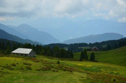 grassland at Passo Oclini