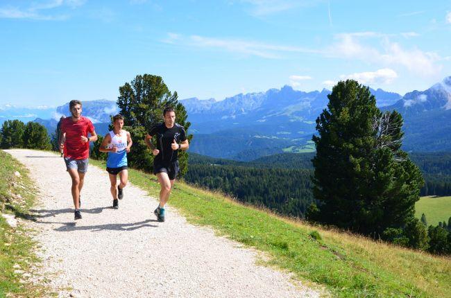 Läufer auf Forstweg mit Latemar