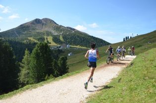 Läufer und Radfahrer auf Forstweg mit Schwarzhorn