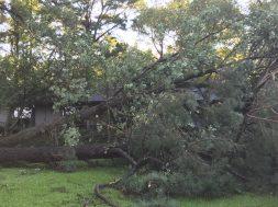 Storm Damage 08-10-18-12DB