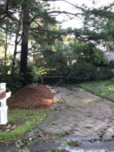 Storm Damage 08-10-18-2DB
