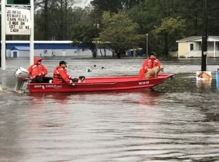 Shallow-Water Response Team 3 rescued four pit bulls and eleven beagles from rising water caused by Hurricane Florence in Delco, North Carolina, Sept. 16, 2018. U.S. Coast Guard photo by Chief Petty Officer Stephen Kelly