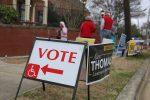 primary-voters