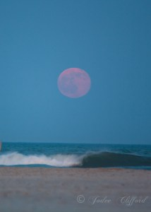 Strawberry moon rise