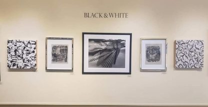 Black and White Show, RRCArts