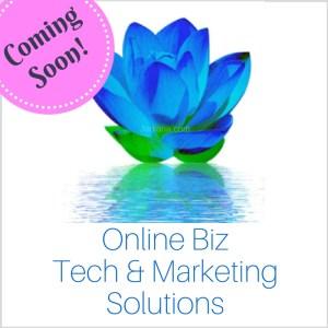 Online Biz Solutions