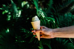 blog on ordinary joy